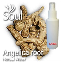 Herbal Water Angelica root - 120ml