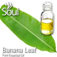 香蕉叶精油 - 10毫升 Banana Leaf Essential Oil