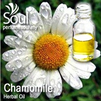 Herbal Oil Chamomile - 50ml