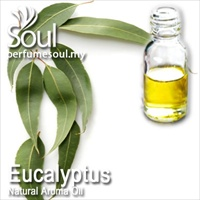 Natural Aroma Oil Eucalyptus - 50ml
