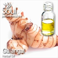 Herbal Oil Galangal - 50ml