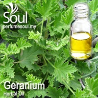 Herbal Oil Geranium - 50ml