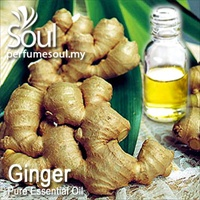 姜精油 - 10毫升 Ginger Essential Oil