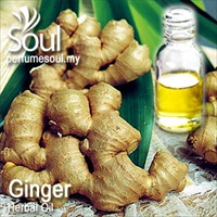 Herbal Oil Ginger - 50ml