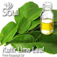 麻疯柑叶精油 - 10毫升 Kaffir Lime Leaf Essential Oil