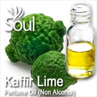Perfume Oil (Non Alcohol) Kaffir Lime - 50ml