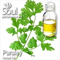 Herbal Oil Parsley - 50ml