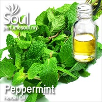 Herbal Oil Peppermint - 50ml