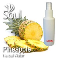 Herbal Water Pineapple - 120ml