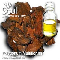 何首乌精油 - 50毫升 Polygonum Multiflorum Essential Oil