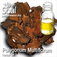 Herbal Oil Polygonum Multiflorum - 50ml