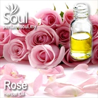 Herbal Oil Rose - 50ml