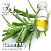 迷迭香精油 - 10毫升 Rosemary Essential Oil