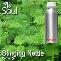 Carrier Oil Stinging Nettle - 1000ml