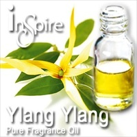 Fragrance Ylang Ylang - 50ml
